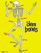 pic 1 dem bones